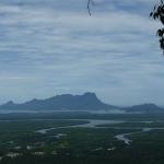 Bornéo : Vous reprendrez bien du vert ?