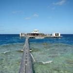 Polynésie : Perliculture à Kamoka