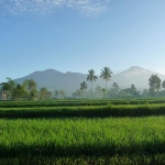 Lombok – Tetebatu