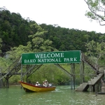 Bornéo : Bako National Park