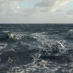 Traversé Tauranga – Tubuaï : Un océan pas très pacifique